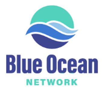 Blue Ocean Network-1